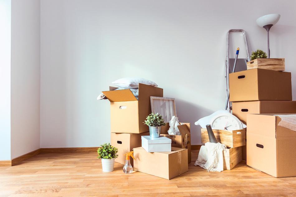 The Proper Approach To Pack Your Home Garden When Moving